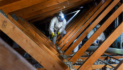 Attic Cleaning & Decontamination
